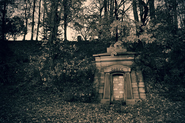 mount pleasant cemetery carty