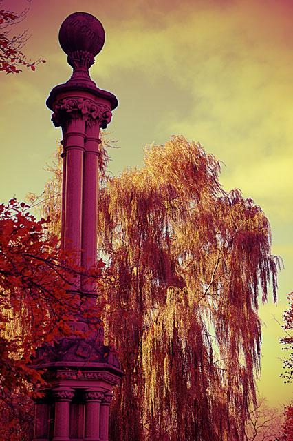 mount pleasant cemetery willow